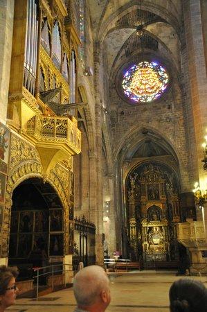 City Sightseeing Palma de Mallorca : Cathedral La Seu - 1