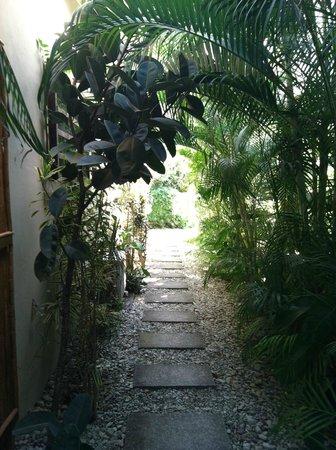 Nautilus Boutique Hotel - Wellness Retreats: beautiful walkways with great plants