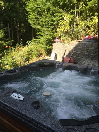Sechelt Inlet B&B: Hot tub