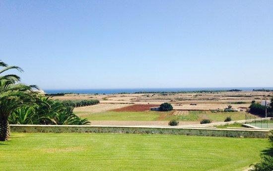 Masseria Panareo: Panorama