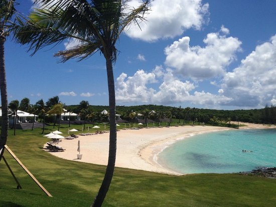 The Cove Eleuthera: The First  beach