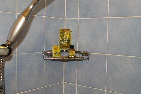 Albergo Hotel Panorama Firenze: ripiano doccia