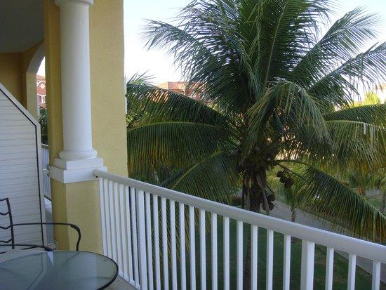 Paradisus Princesa del Mar Resort & Spa: VISTAS A COCOTEROS DESDE LA TERRAZA