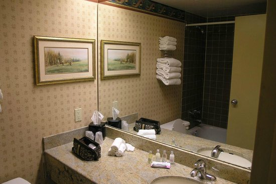 Pinestone Resort and Conference Centre: Bath