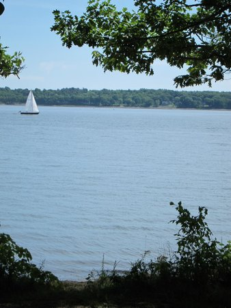 Mackworth Island: view from swing
