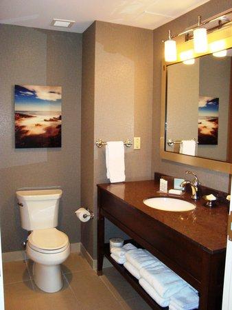 Hampton Inn by Hilton Halifax Downtown: bathroom