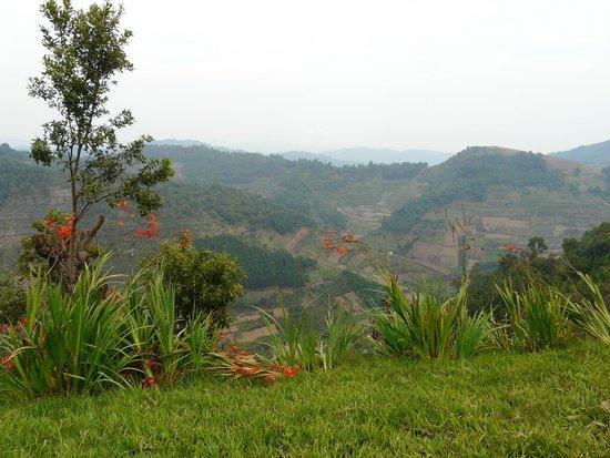Bakiga Lodge: View from lodge