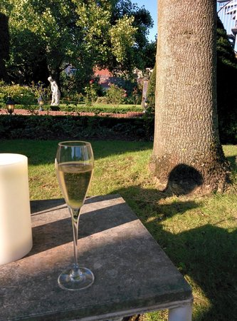 Chateau de Montreuil : Champagne in the garden