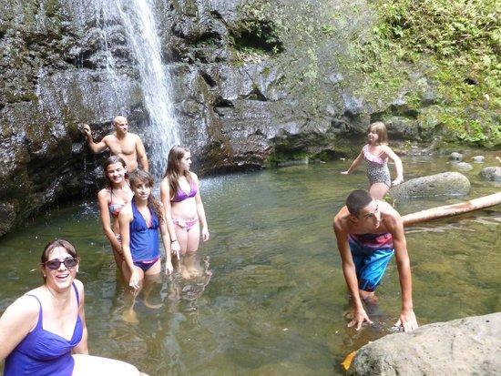 Manoa Falls: Finally arrived!