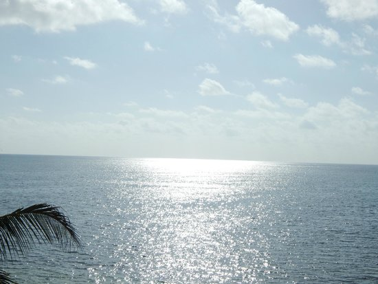 Zoetry Paraiso de La Bonita : Ocean View