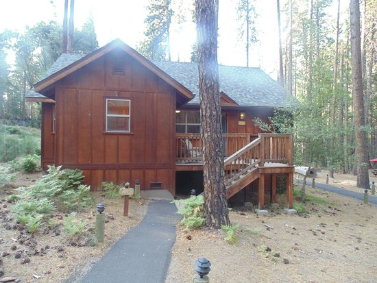 Evergreen Lodge at Yosemite : Evergreen