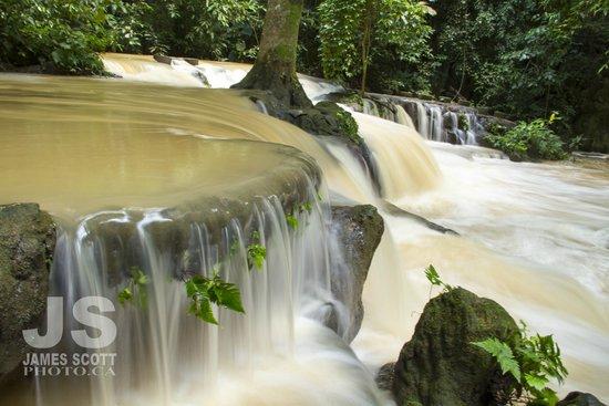 Khao Phanom Bencha National Park : flooded forest floor