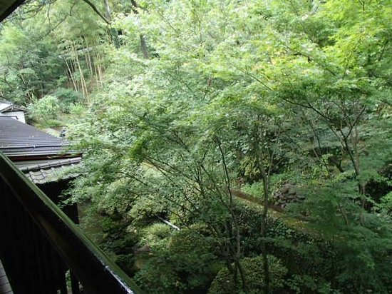 Kurokawa Onsen Okunoyu: 部屋からみえる山側