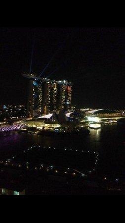 Mandarin Oriental, Singapore: Вид