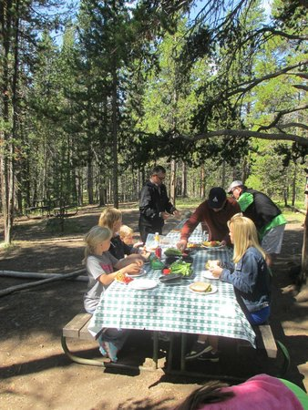 BrushBuck Wildlife Tours - Day Tours: The delicious meal prepared for us by Duane at Yellowstone.