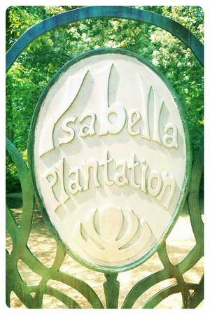 Richmond Park: Entrance to Isabella Plantation.. you will not be disappointed !
