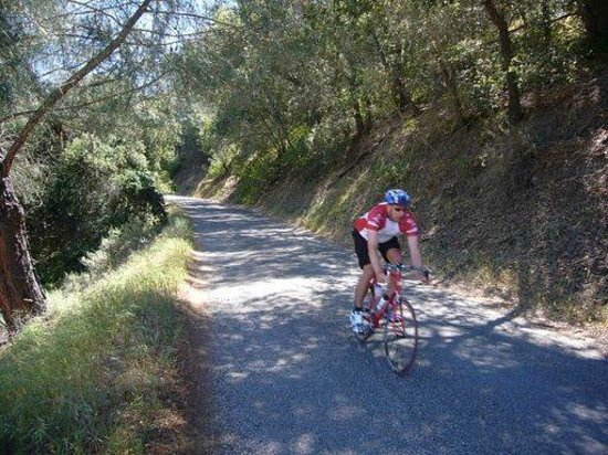 Santa Barbara Wine Country Cycling Tours - Day Tours: Sweet Riding Conditions!