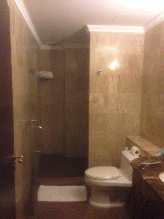 Four Seasons Place: ванная