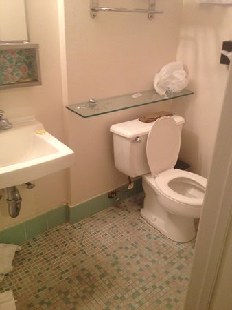 Grant Plaza Hotel: Toilet and shower. Ok size.