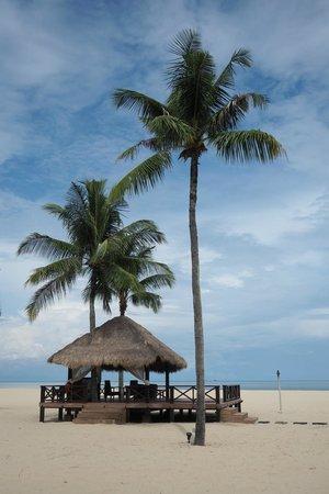Shangri-La's Rasa Ria Resort & Spa : Nice scenery at the beach