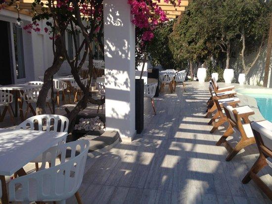 Cavo Bianco: Espace restaurant/piscine