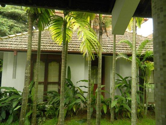 Ramada Resort Cochin: Surroundings..