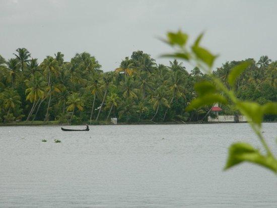 Ramada Resort Cochin: Thru my cam...