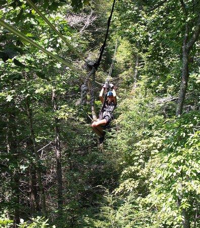 Navitat Canopy Adventures - Asheville Zipline: 11 yr old granddaughter zip lining!