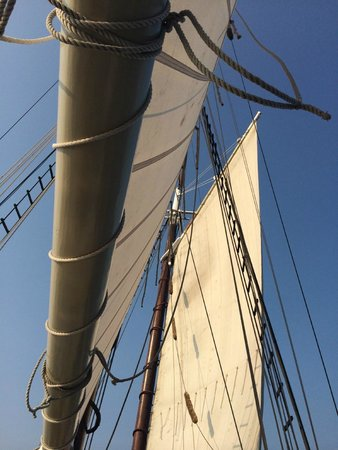 Tall Ship Manitou - Day Tours: Look up at the sails