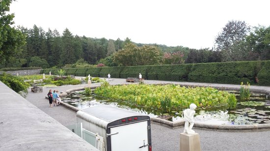Biltmore Estate : part of the garden
