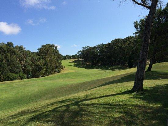 Penha Longa Resort: Vista su uno dei bellissimi campi da Golf