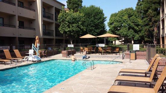 Courtyard Los Angeles LAX/El Segundo : piscina