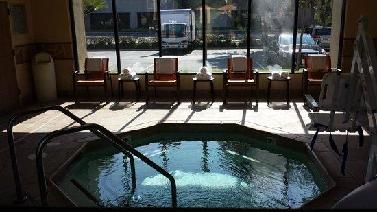 Courtyard Los Angeles LAX/El Segundo : spa