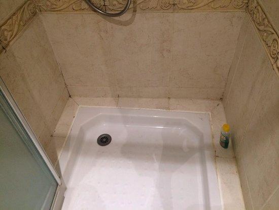 Royal Hôtel : La douche avec les moisissures