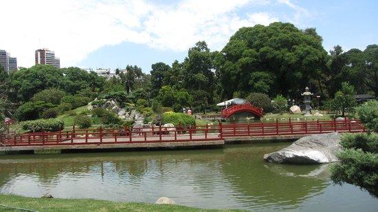Jardin Japones : Jardín Japones
