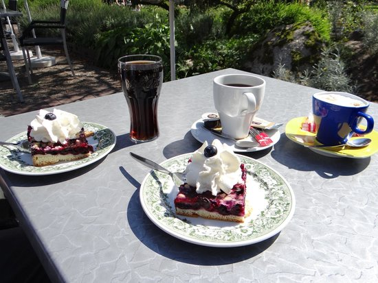Weltvogelpark Walsrode: Delicious Blueberry cake