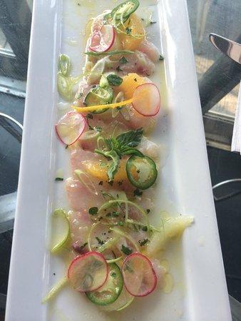 Ferro Bar & Cafe : RED SNAPPER CRUDO!  Like Japanese sashimi, but the Italian version.