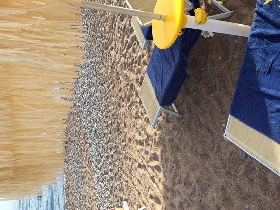 Hotel Splendid Conference & Spa Resort: Spiaggia privata