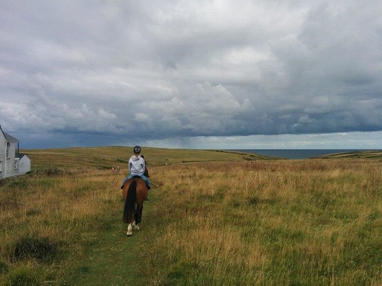 Newquay Riding Stables: One of the amazing views from the trek.