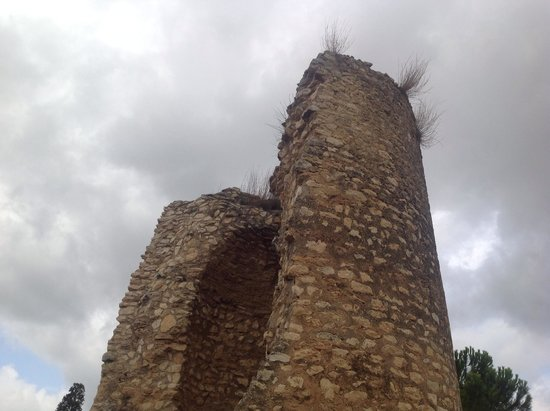 Open Guide Group: Medieval tower at Finca Viladellops
