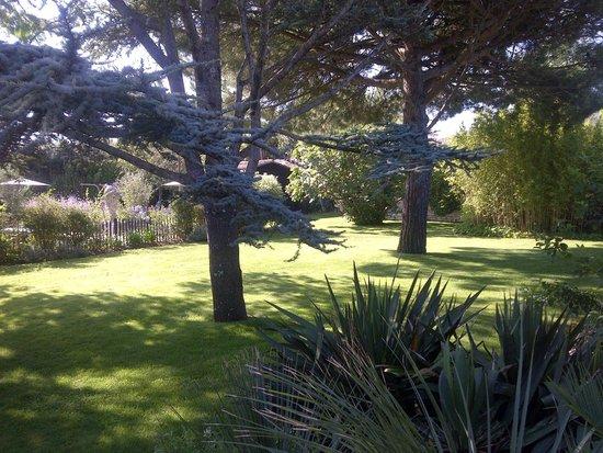 Le Clos Saint-Martin Hôtel & Spa : Jardin côté Spa et Piscine adultes