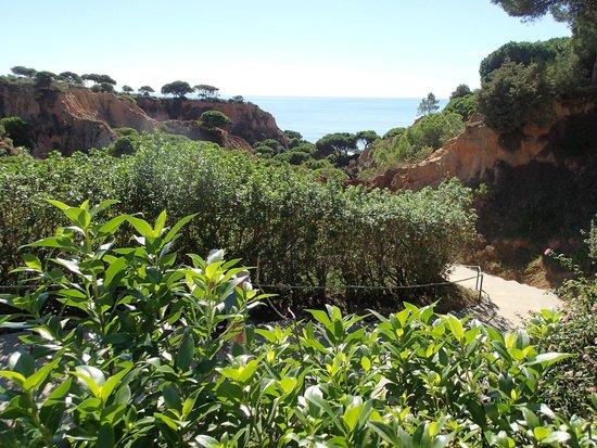 PortoBay Falesia : Path to the sea.