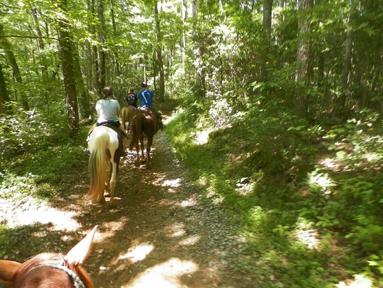 Sugarland Riding Stables: Wonderful trail.