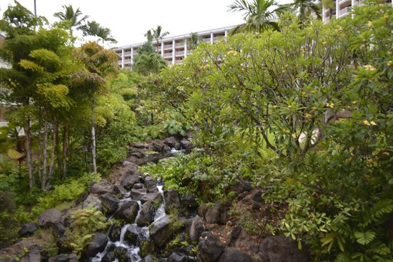 Grand Wailea - A Waldorf Astoria Resort: Small waterfall