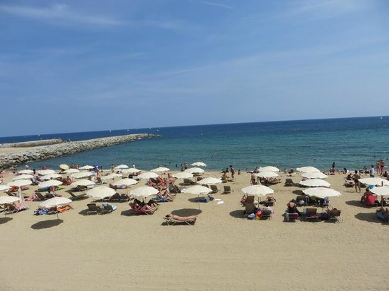 Occidental Atenea Mar - Adults only : beautiful sandy beach