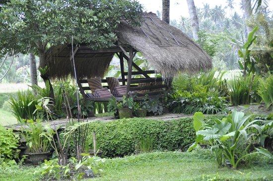 Omah Apik: Petit coin au calme