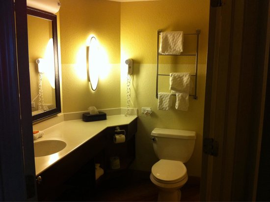 La Quinta Inn & Suites Oklahoma City Norman: Roomy bathroom