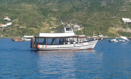 SeaQuest Sub