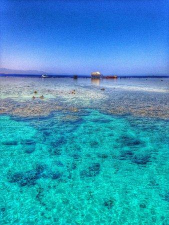 Coral Sea Sensatori - Sharm El Sheikh: View from the jetty on the beach.