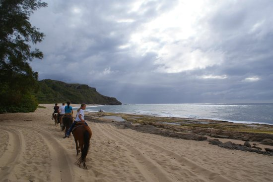 Tropical Trail Rides - Isabela: cloudy